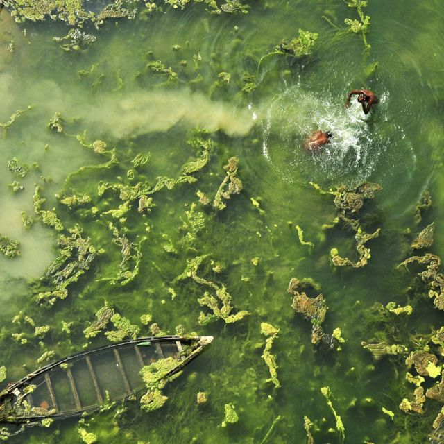 Aerial view of people bathing in West Bengal, India.