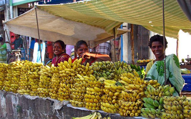 Banana street vendors