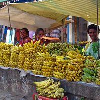 at a street stall in Valmiki Nagar, Chennai