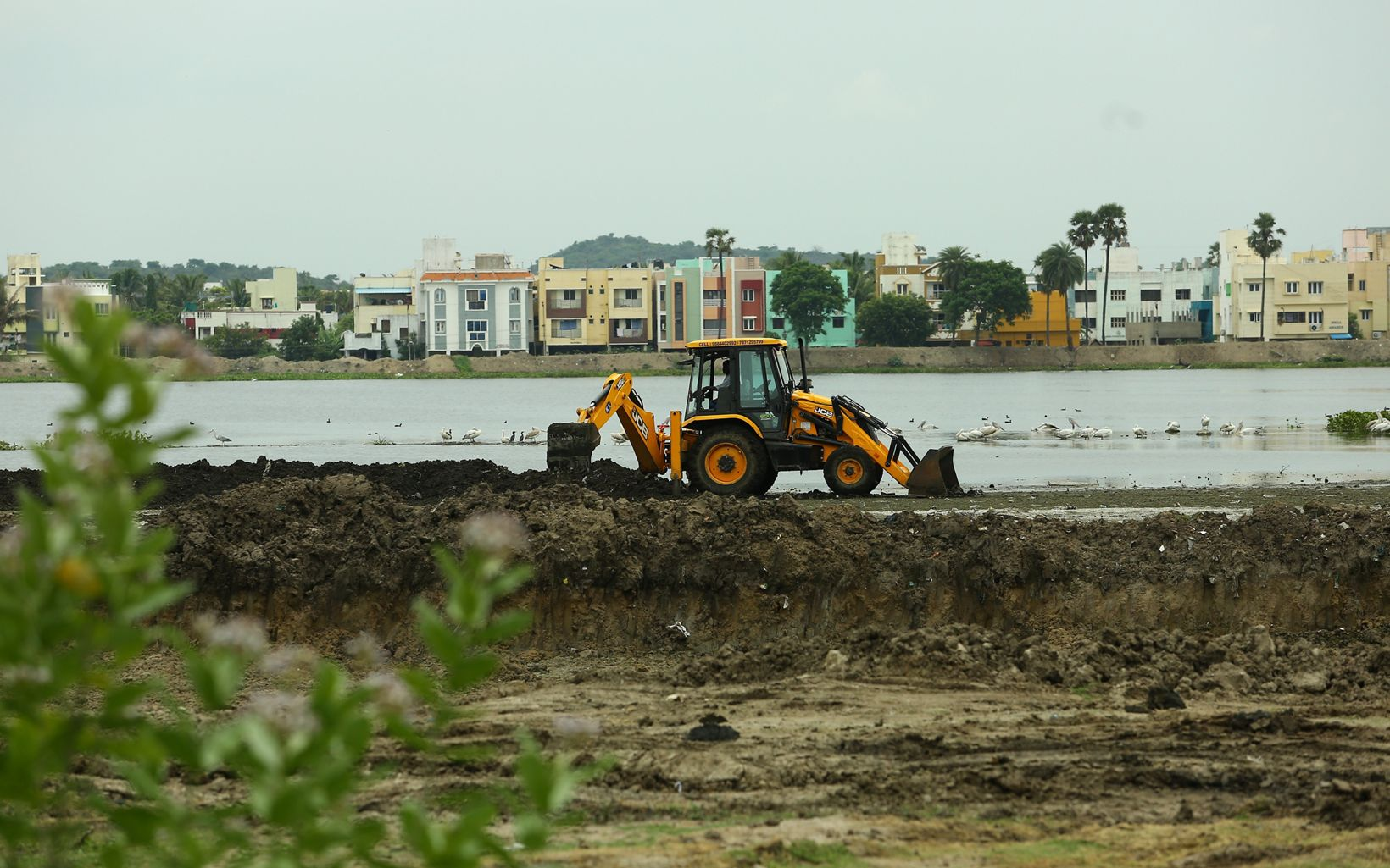 the lake by removing silt