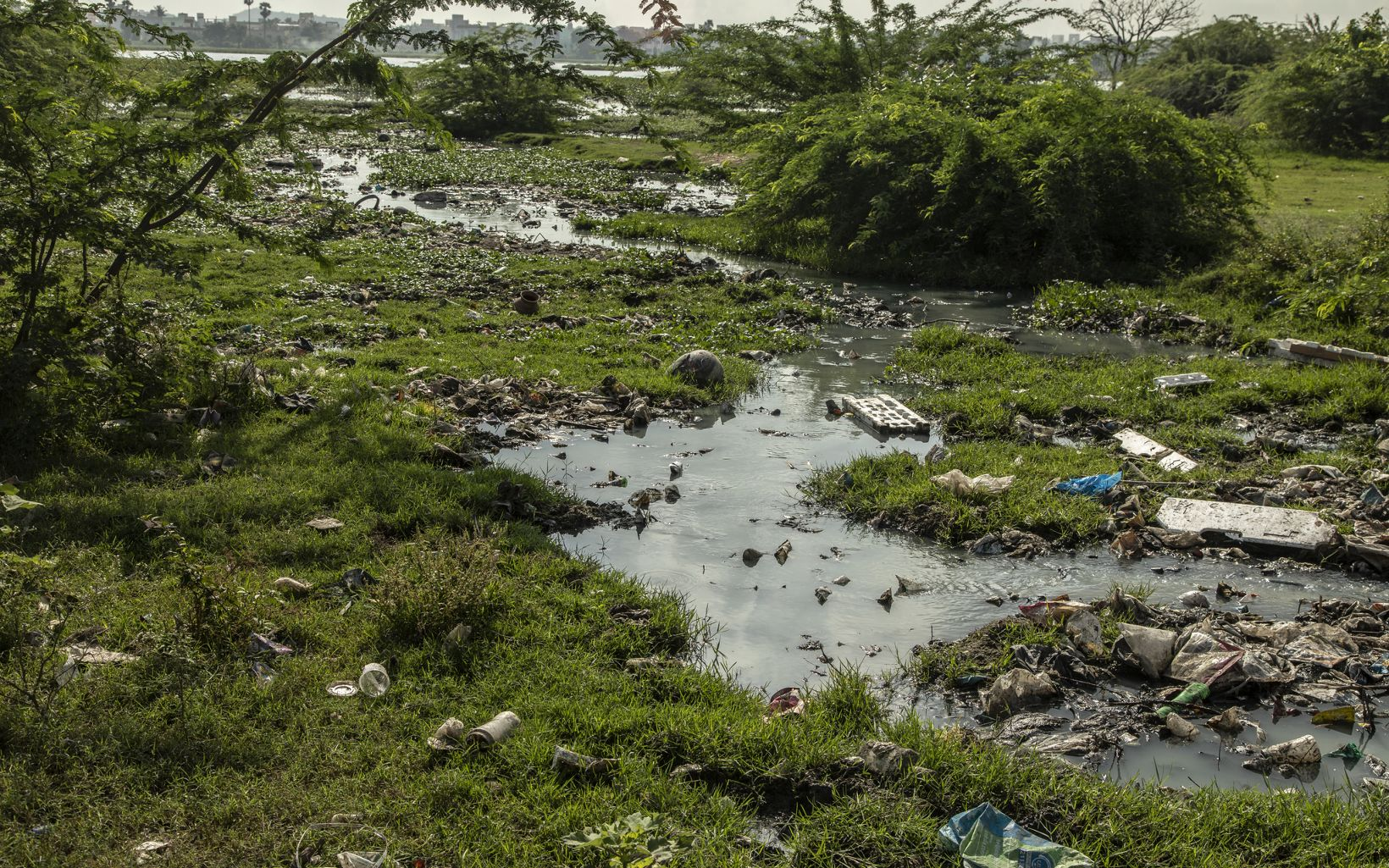 and solid wastes accumulated in the Lake Sembakkam