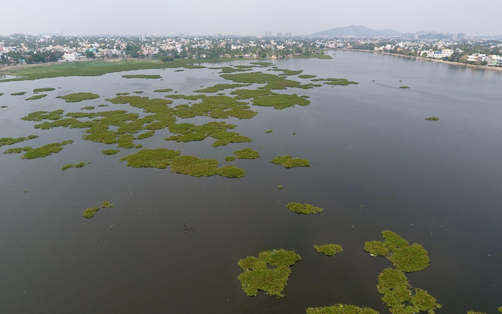 of Lake Sembakkam in Chennai