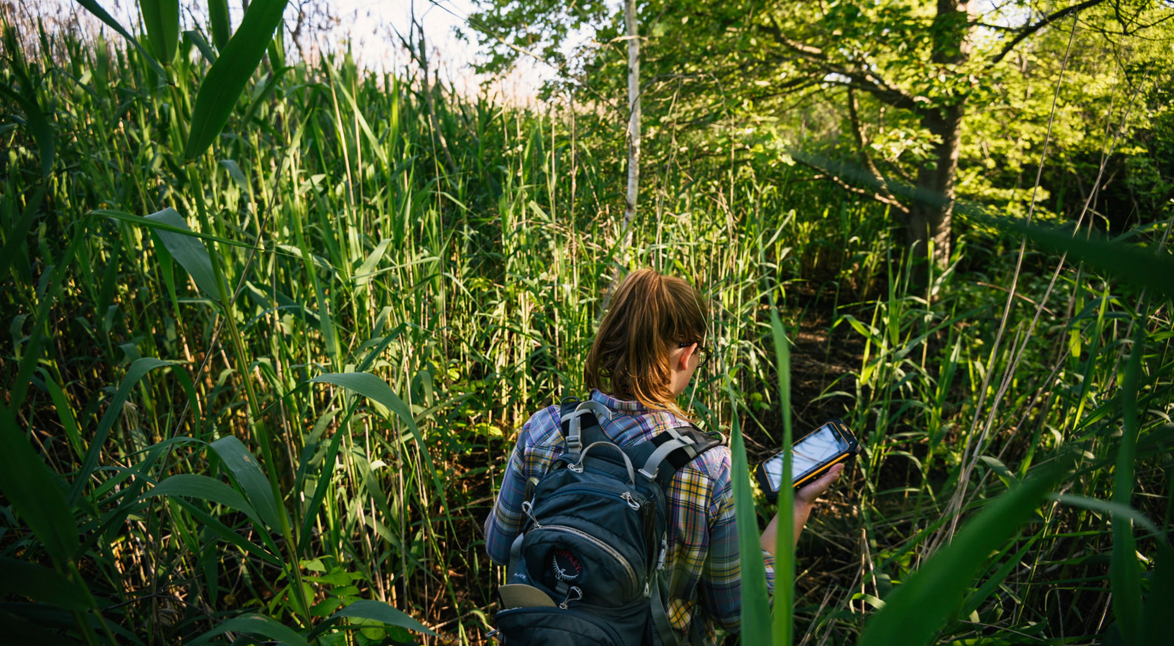 TNC scientist Lauren Alleman, in Jamaica Bay Wildlife Reserve, New York, USA.