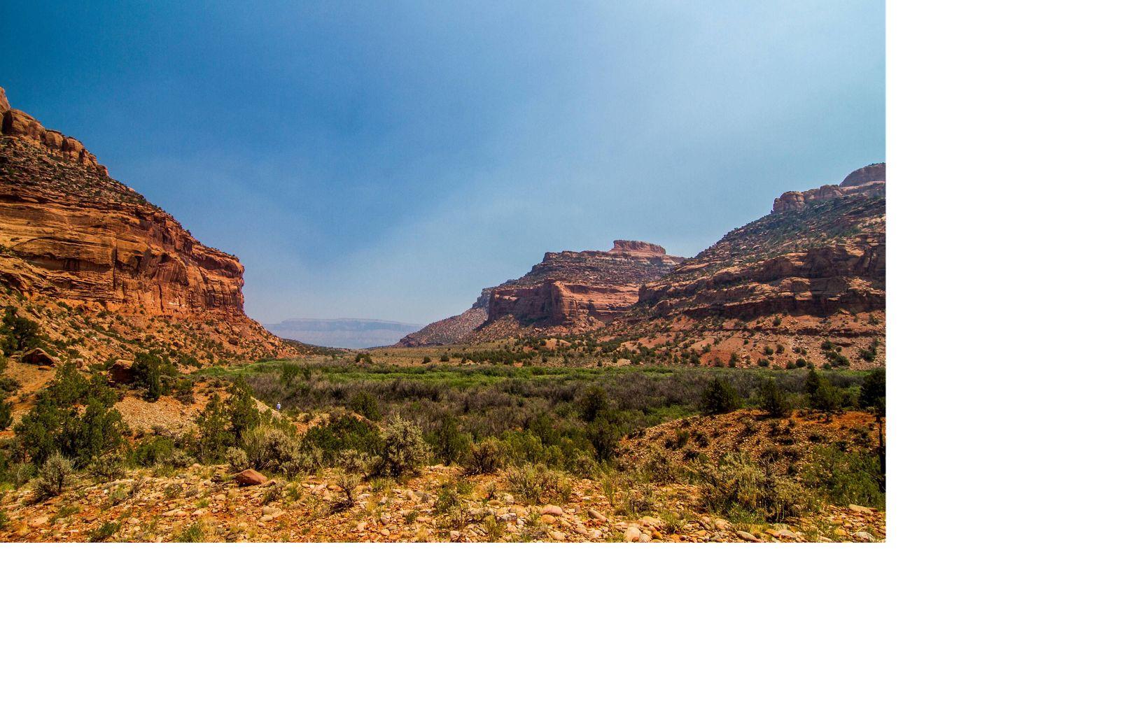 Southwest Colorado landscape near the Dolores River.