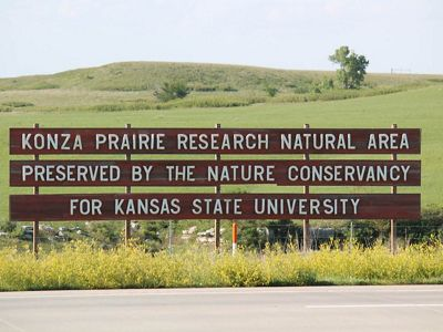 Brown wooden sign reads Konza Prairie