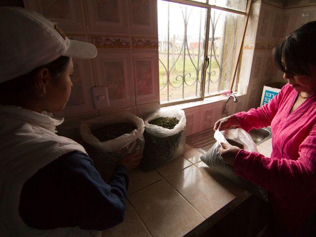los proyectos que involucran a las mujeres garantizan la sostenibilidad del uso del agua y la conservación del medio ambiente