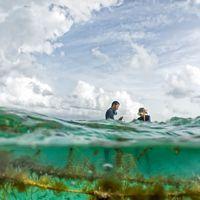 hombres trabajando en granjas marinas en Belice