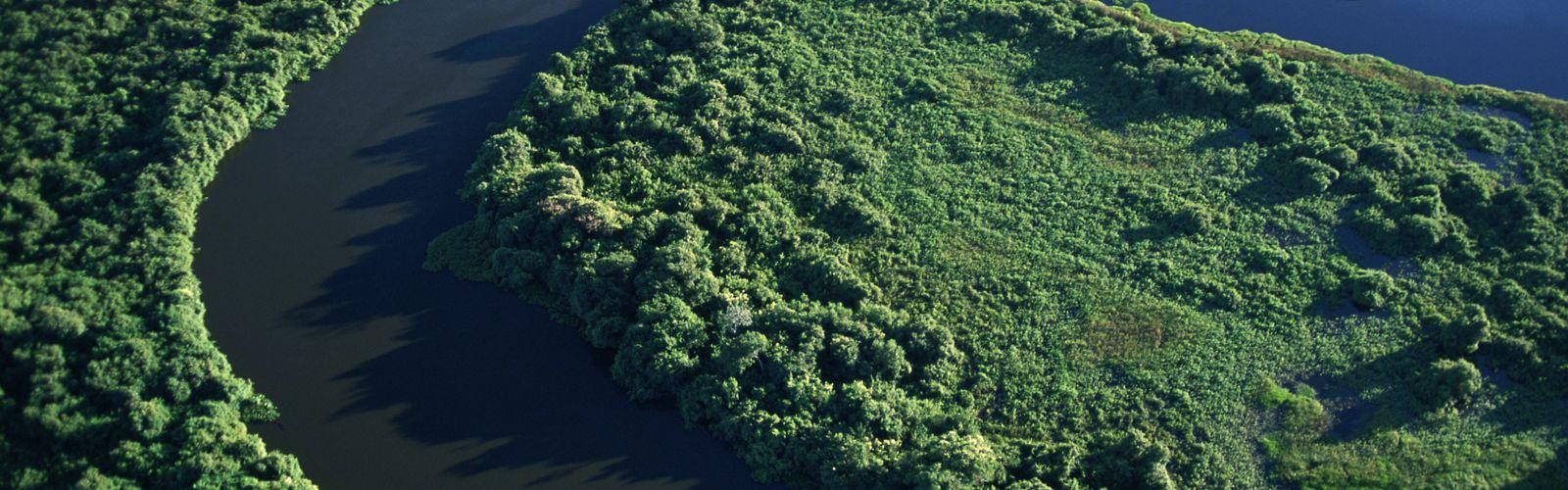 Vista aérea del río Cuiab cruzando el Parque Nacional Pantanal en Brasil.