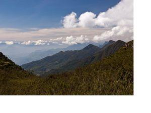 Paisaje del Parque Nacional Chingaza
