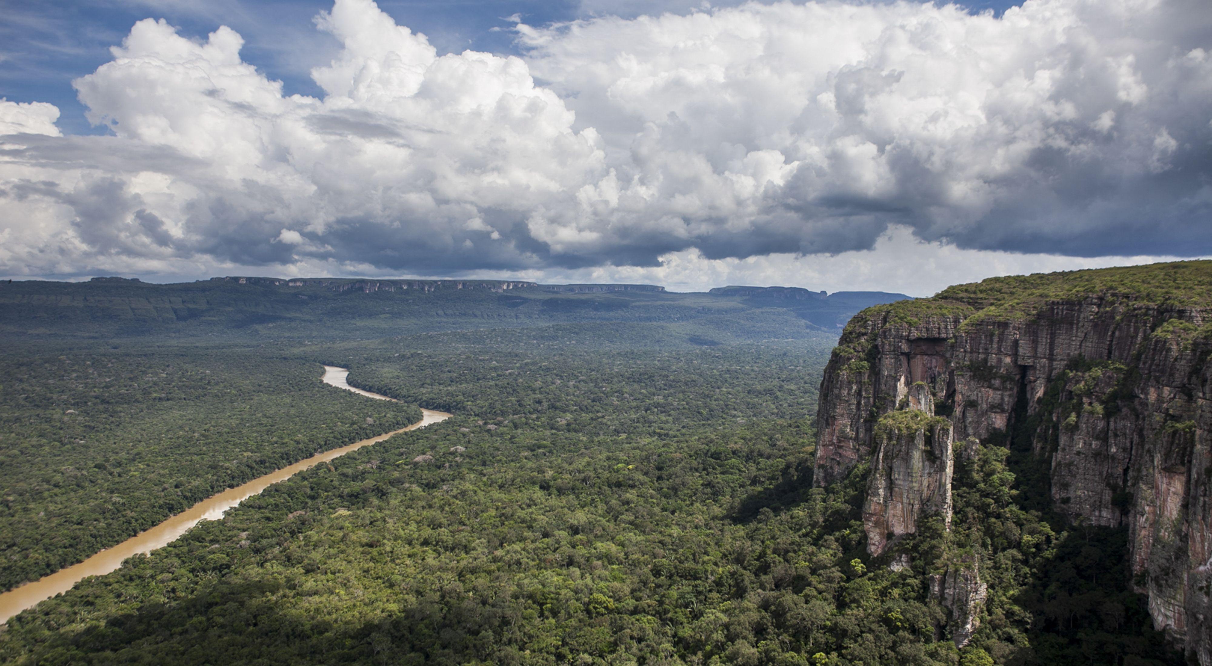 Parque Nacional Natural Sierra de Chiribiquete in Colombia