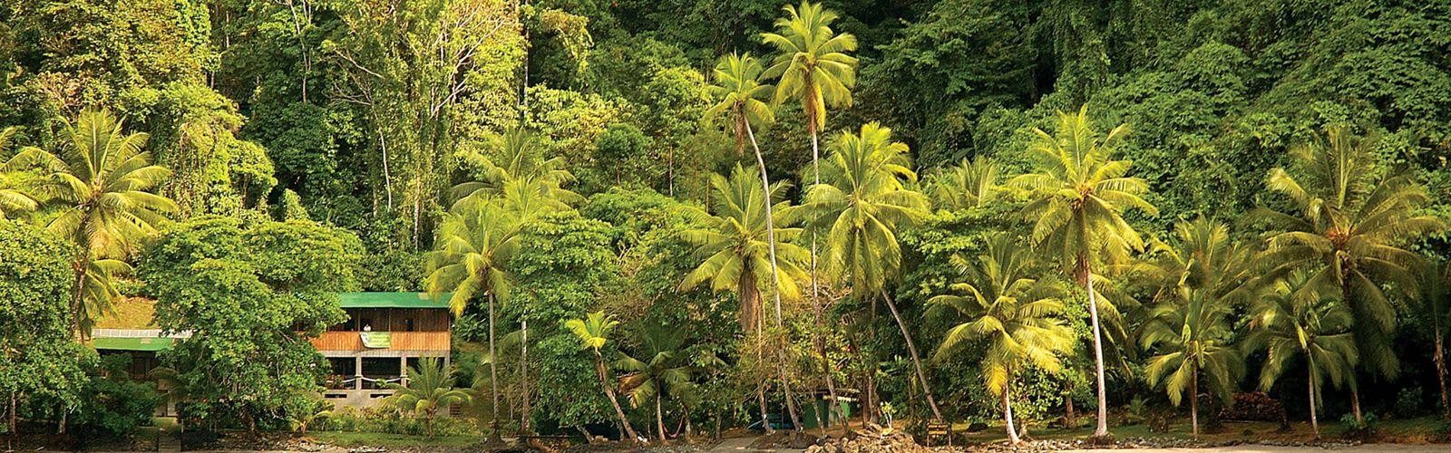 Vista de la Estación Biológica Campanario (Reserva Biológica Campanario) y la selva situada en la costa del Pacífico de la Península de Osa en Costa Rica.