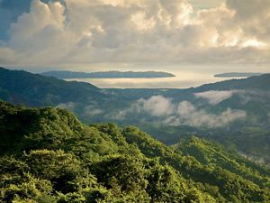 Tropical dry forest and the Gulf of Nicoya in northeastern Costa Rica.