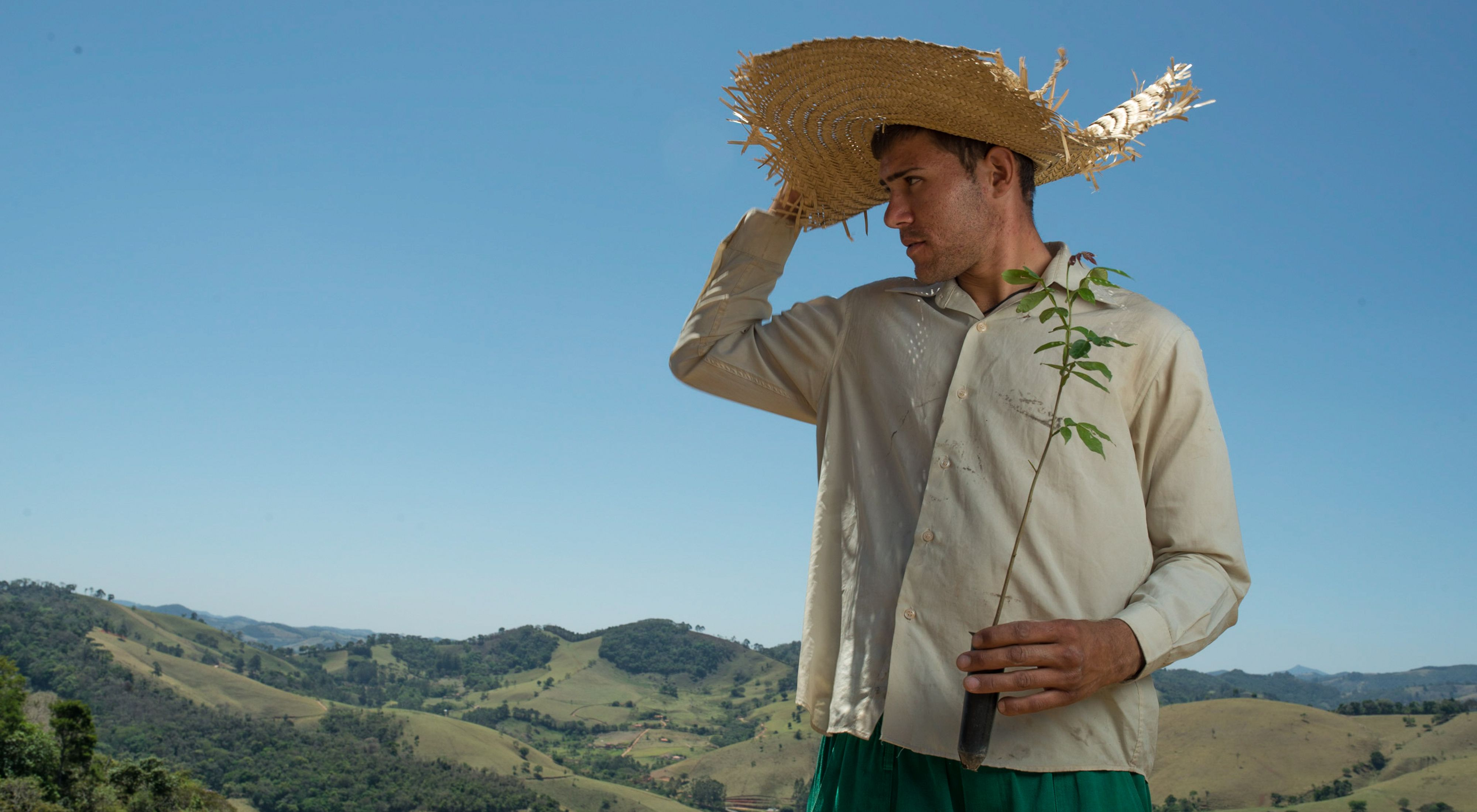 Vinicius Uchoa, un plantador de árboles local