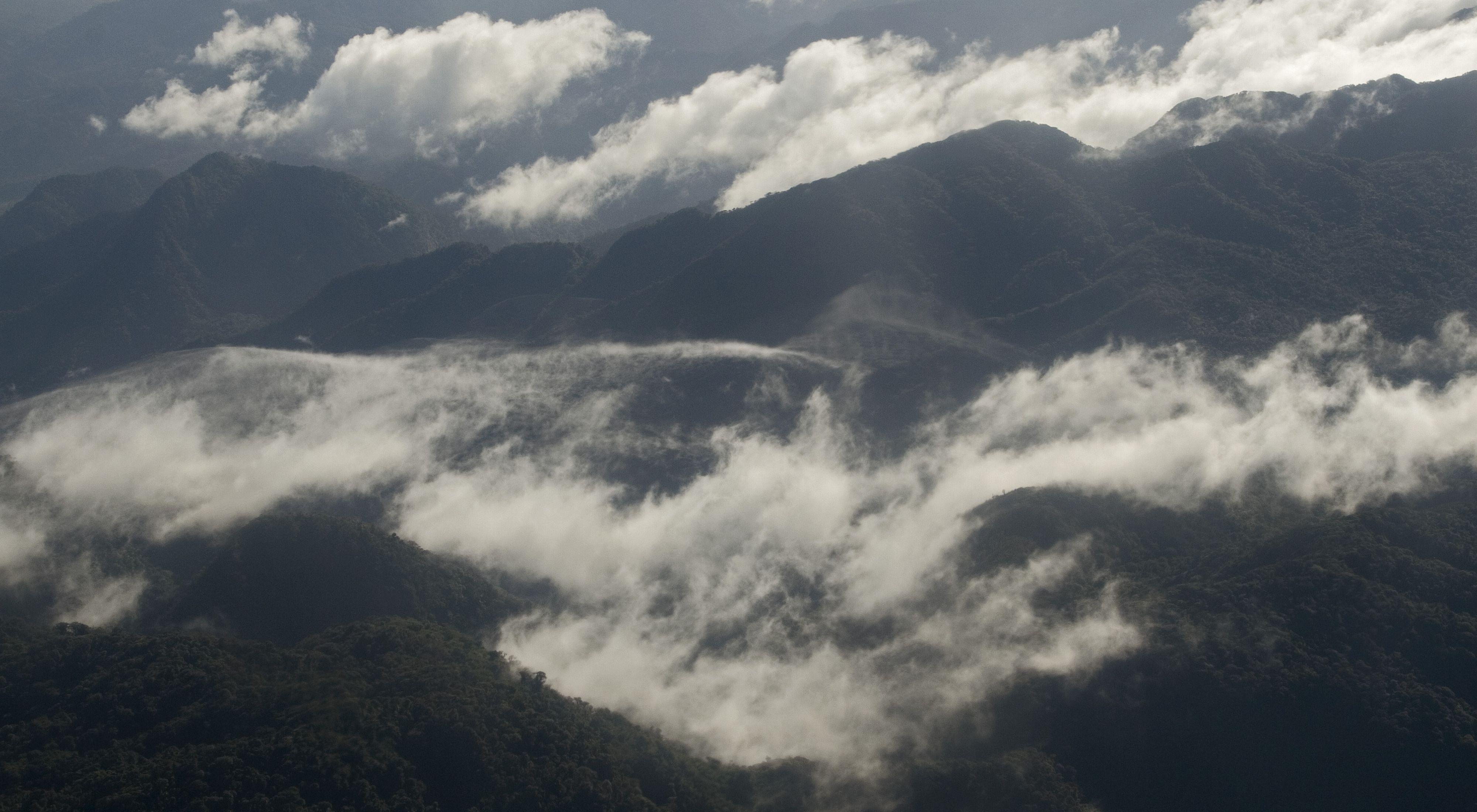 Paisaje de los bosques de Panamá