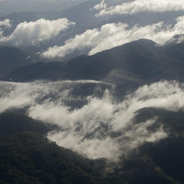 Vista desde un avión que vuela sobre los bosques nubosos de las tierras altas occidentales de la provincia de Chiriquí, Panamá.