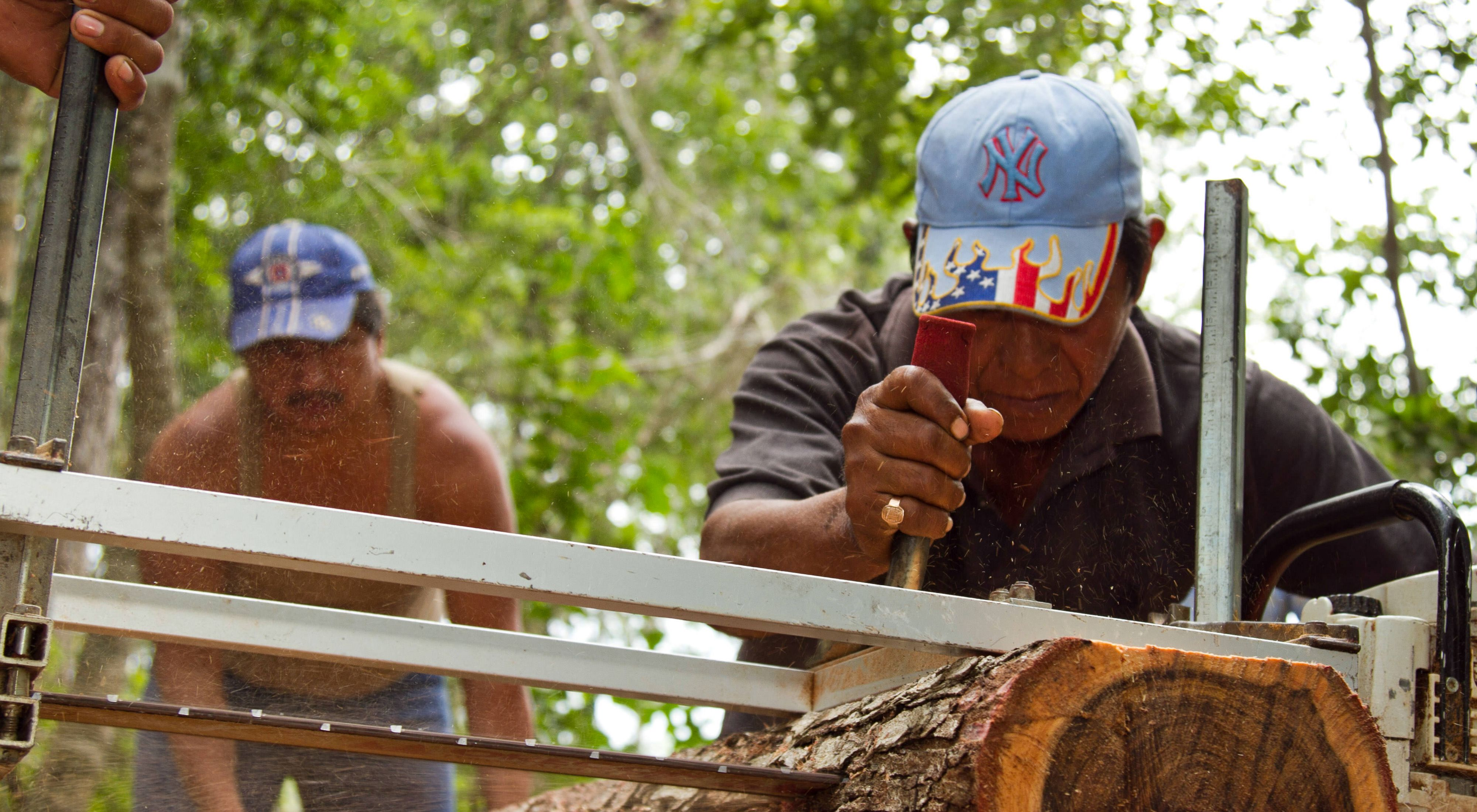 Los hombres del ejido de Bethania, un territorio de propiedad comunal, usan un aserradero portátil para cortar tablas de madera de los árboles que cosechan.