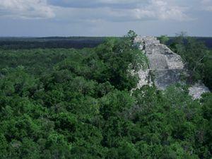 Ruinas de los templos Mayas en La Selva Maya