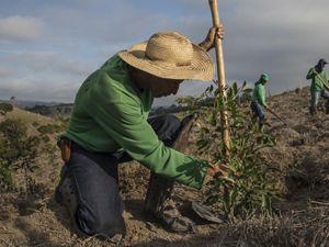 2020-2030  La década de la acción climática