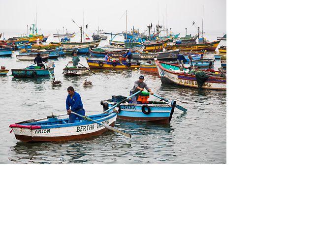 Pescado, Ancón, Perú. Ancón es un pequeño pueblo pesquero y un destino de vacaciones junto al mar a una hora al norte de Lima.