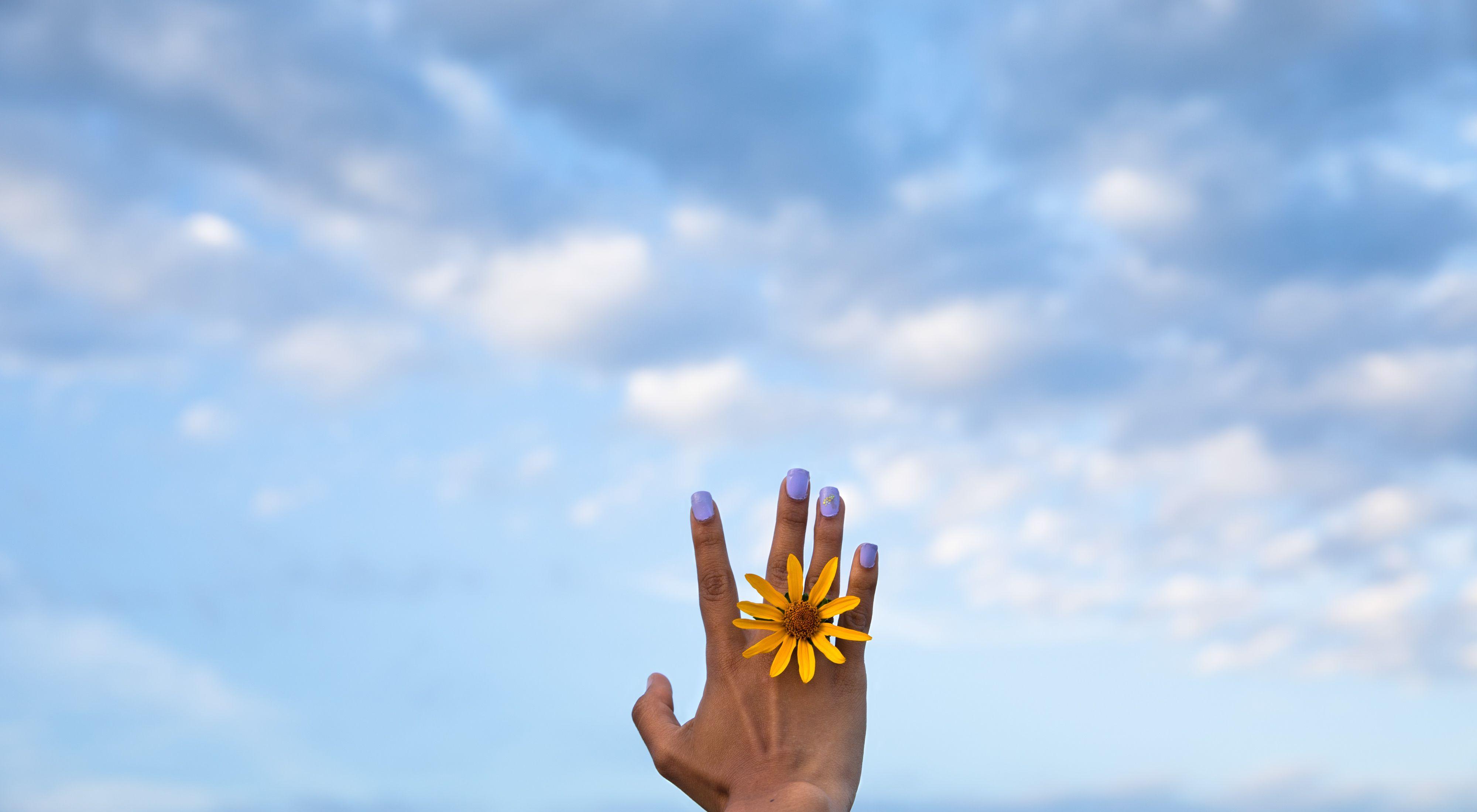 Una mujer sostiene una flor, de fondo un cielo azul embellece la tarde.