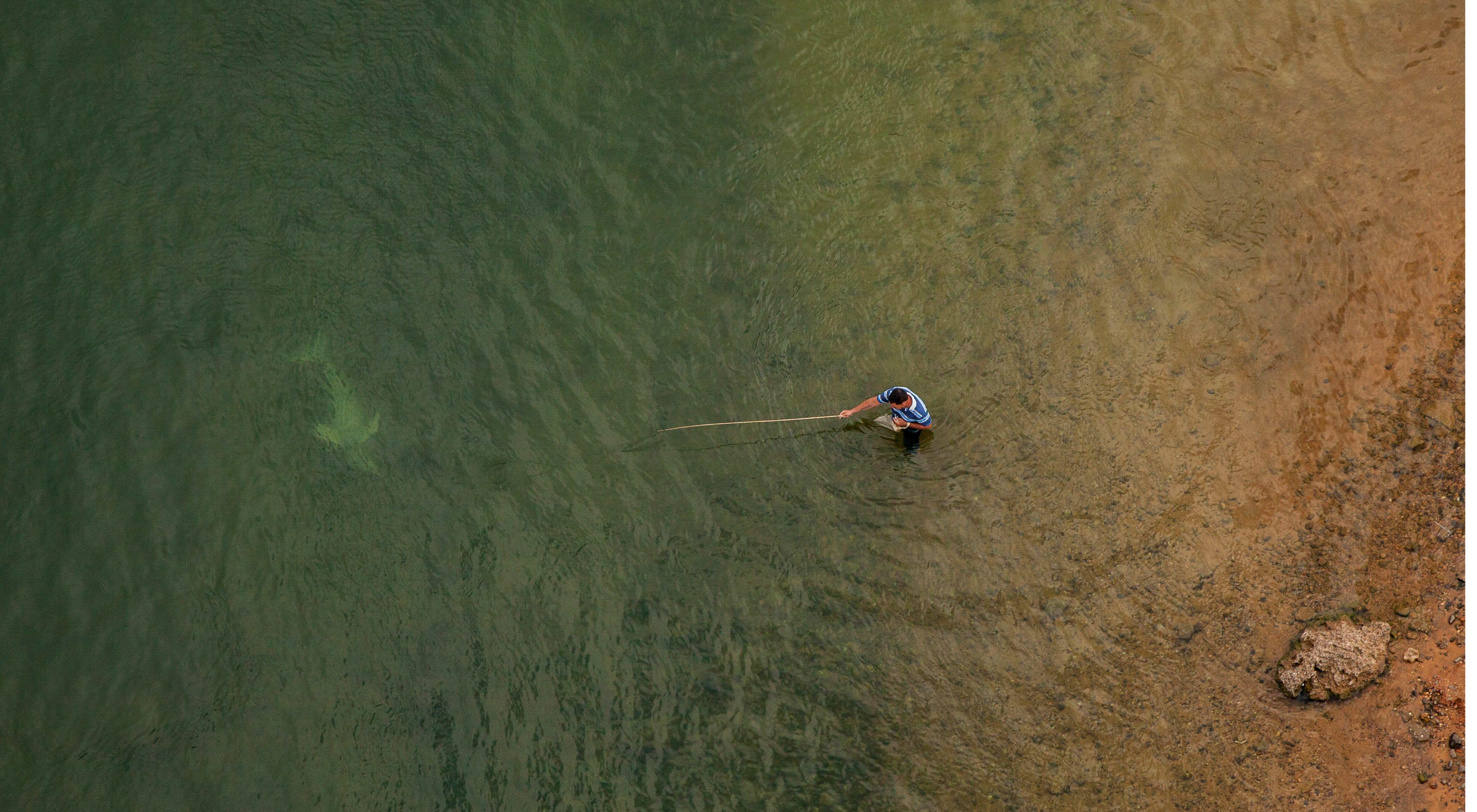 Boto do Araguaia (Inia araguaiaensis) nadando junto a un pescador local usando una caña de bambú para pescar en el río Tocantins, en Imperatriz-MA