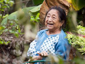 comunidades en la Selva Maya