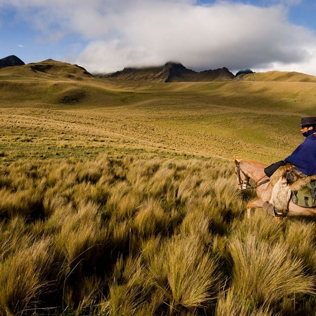 Local ecotourism guide, Celso Changoluisa, rides through high Andean grasslands in the Cotopaxi National Park buffer Zone in Ecuador, South America. Celso works at the Santa Rita hacienda, owned and operated as an eco-tourist business by Jorge Perez, who works with the Conservancy and other landowners to improve cattle ranching practices and preserve the region.