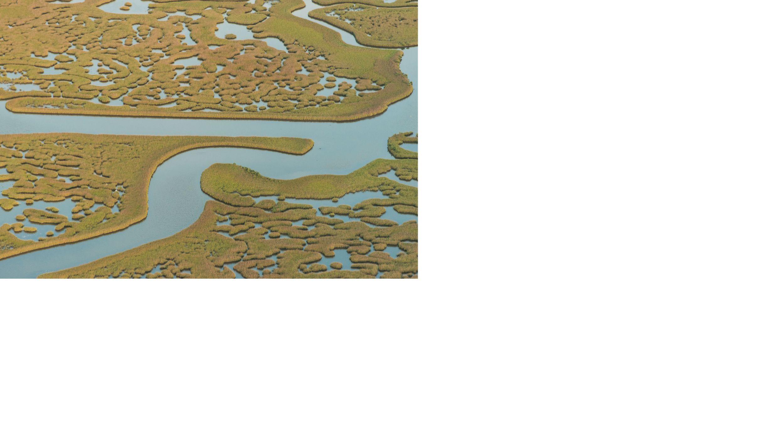 ciudad de méxico, ciudad, fondo de agua, agua