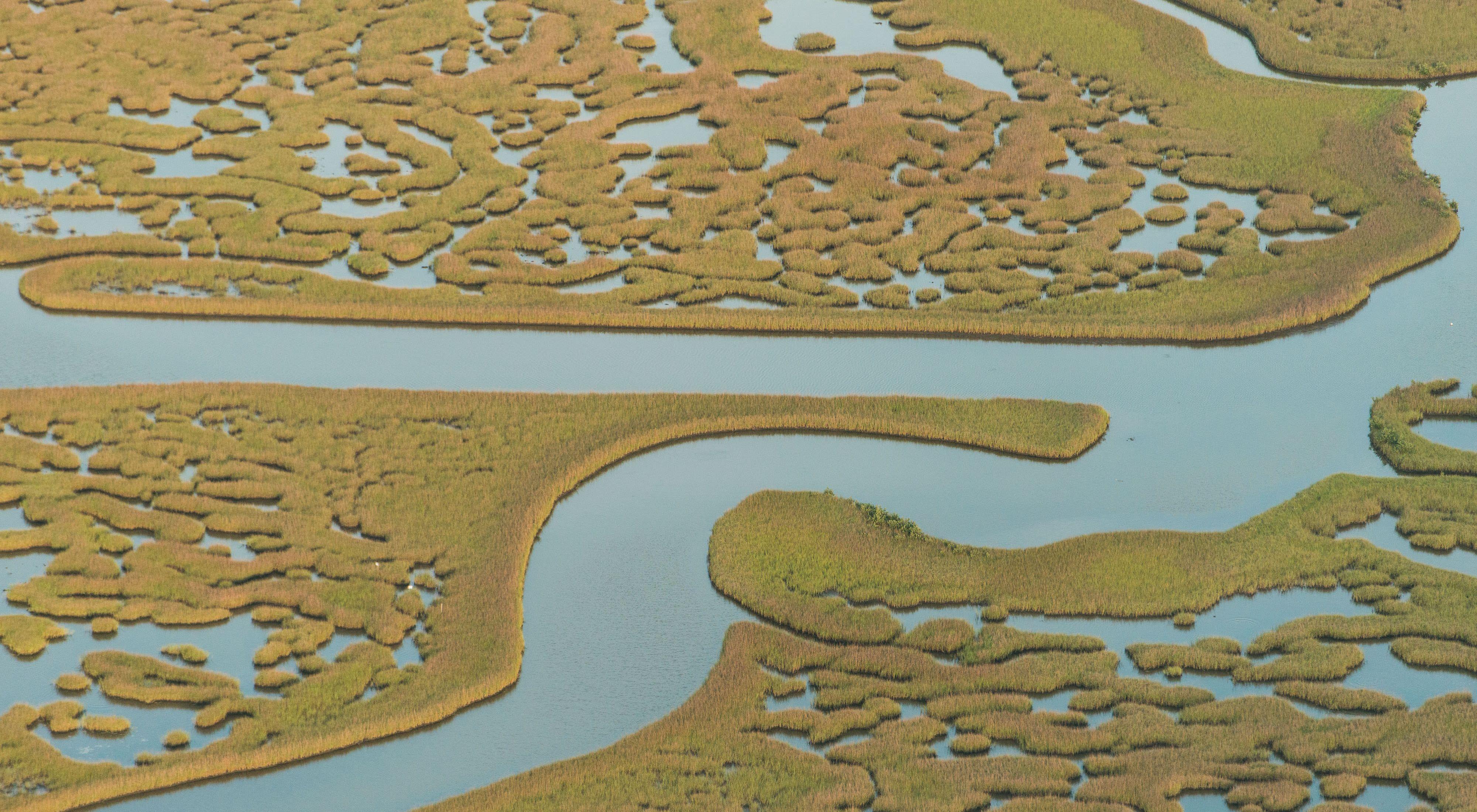 Ríos que producen energía y garantizan la conservación