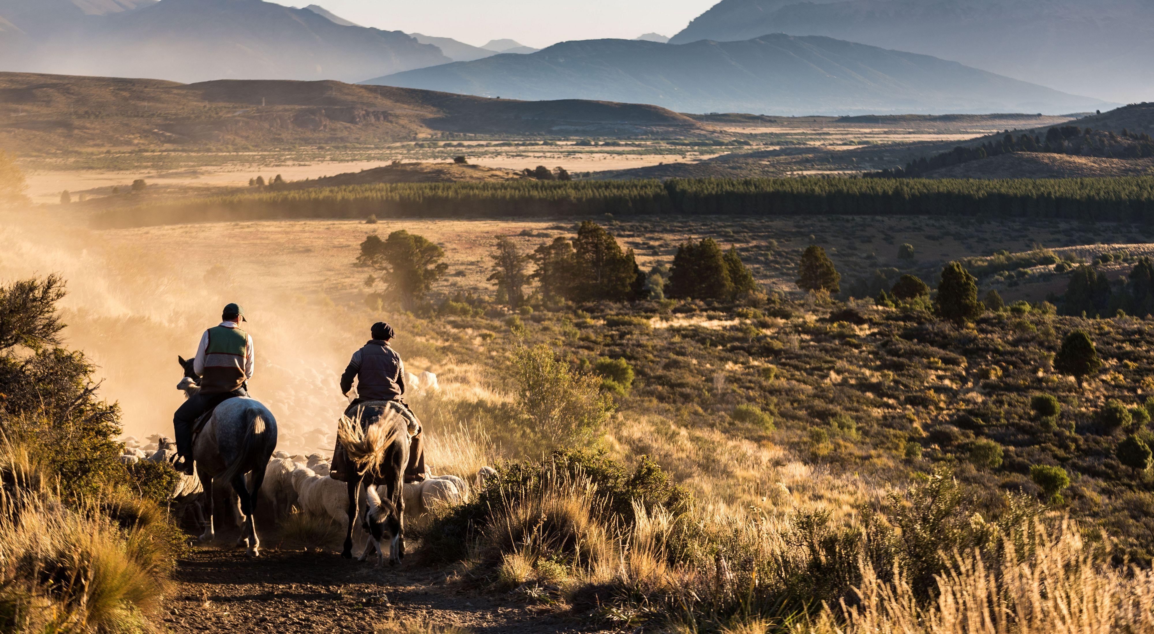 Parque Nacional Nahuel Huapi.