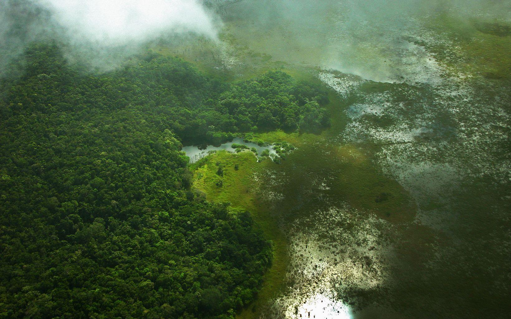 Vista aérea de la Selva Maya en México