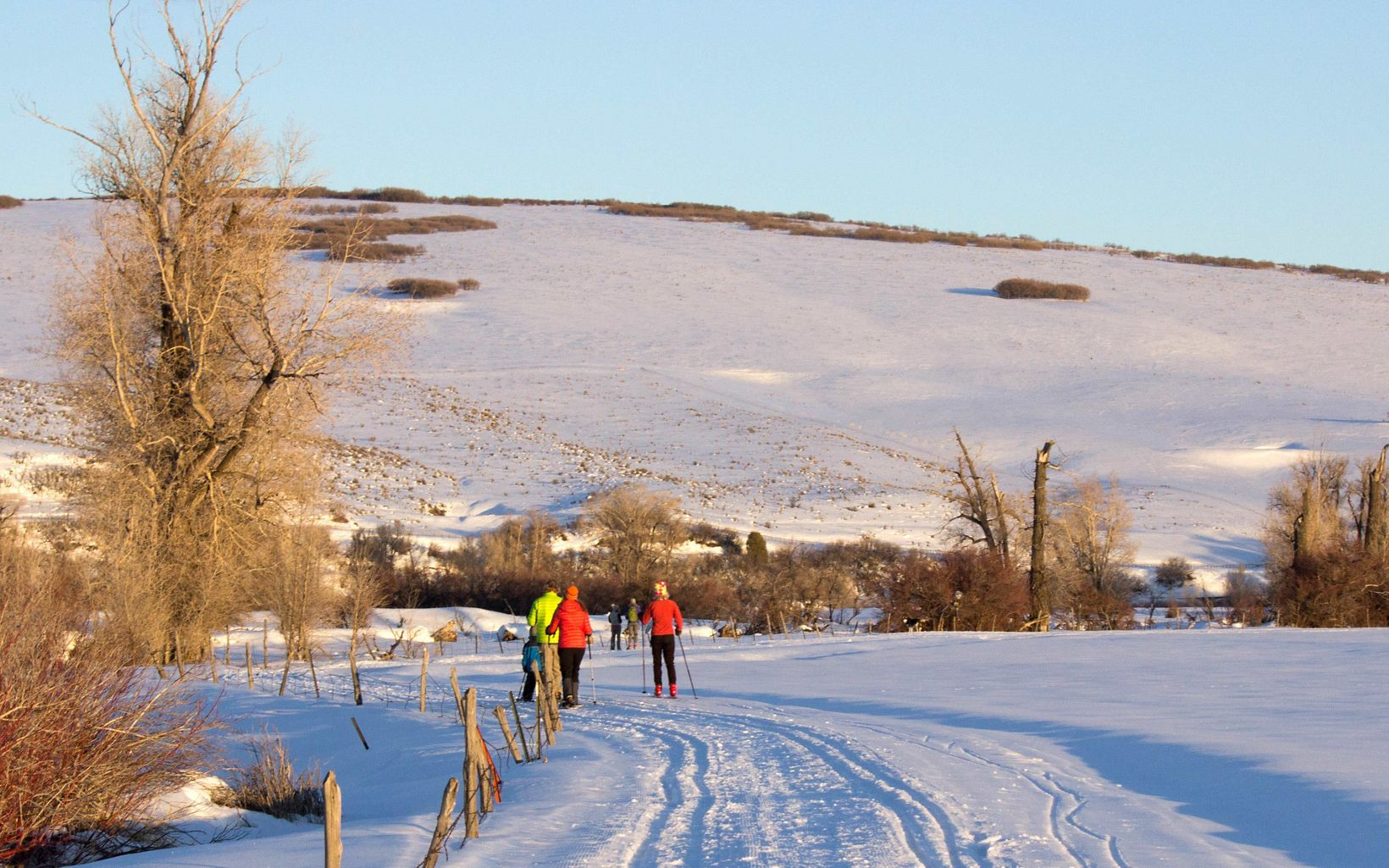 Cross country skiing at Carpenter Ranch in Hayden, CO