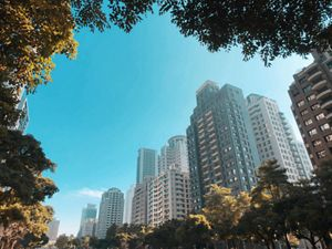 A view of skyline framed by trees in a park in Taipei.