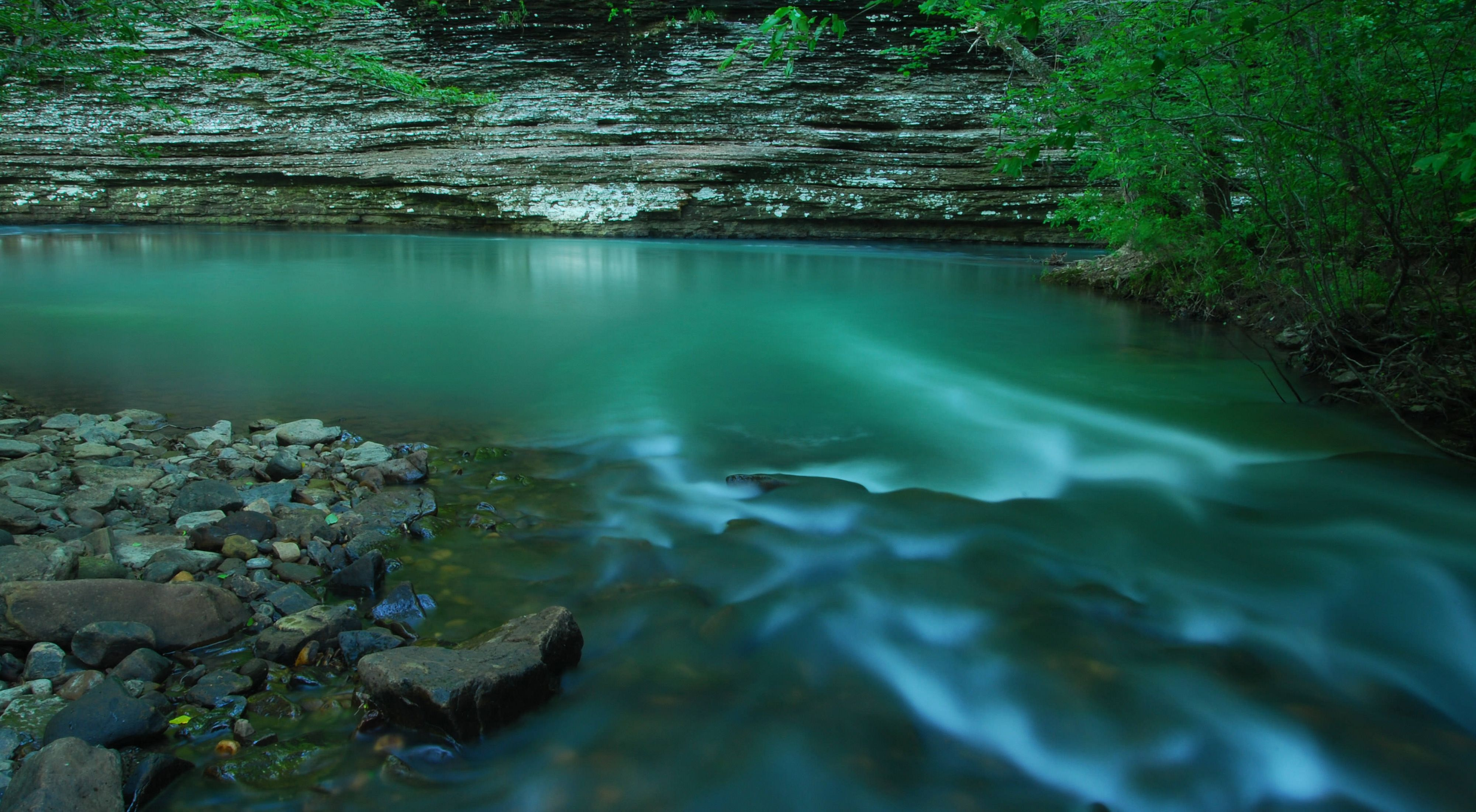 the nature conservancy in arkansas