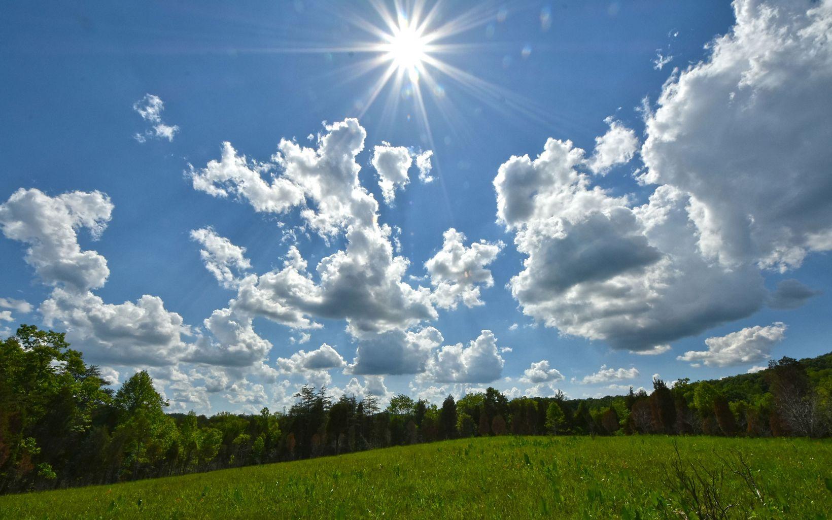 A sunny day at Lynx Prairie