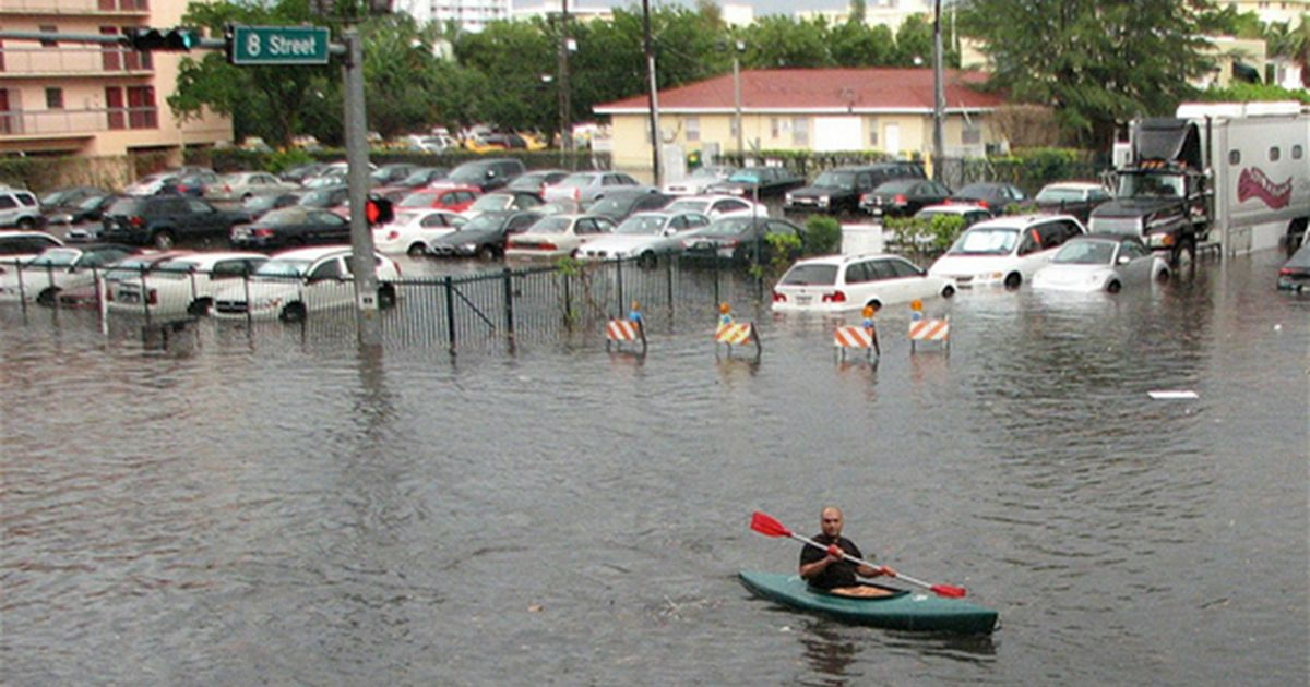 Low-lying coastal cities like Miami can reduce the impacts of rising sea levels and severe weather by investing in green infrastructure.