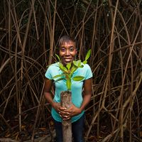 Nealla Frederick, TNC's Eastern Caribbean Conservation Planner, holds a young red mangrove shoot during a mangrove restoration project.