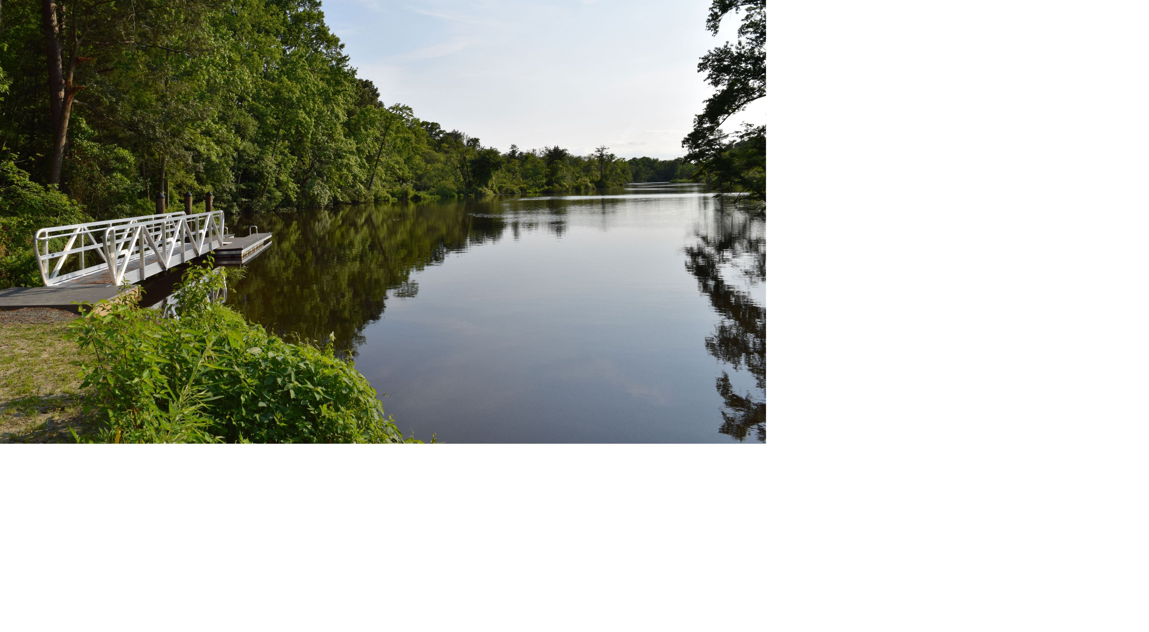 A short dock floats at the edge of the Broadkill River. The still surface of the water reflects the tall leafy green trees that line the river's edge.