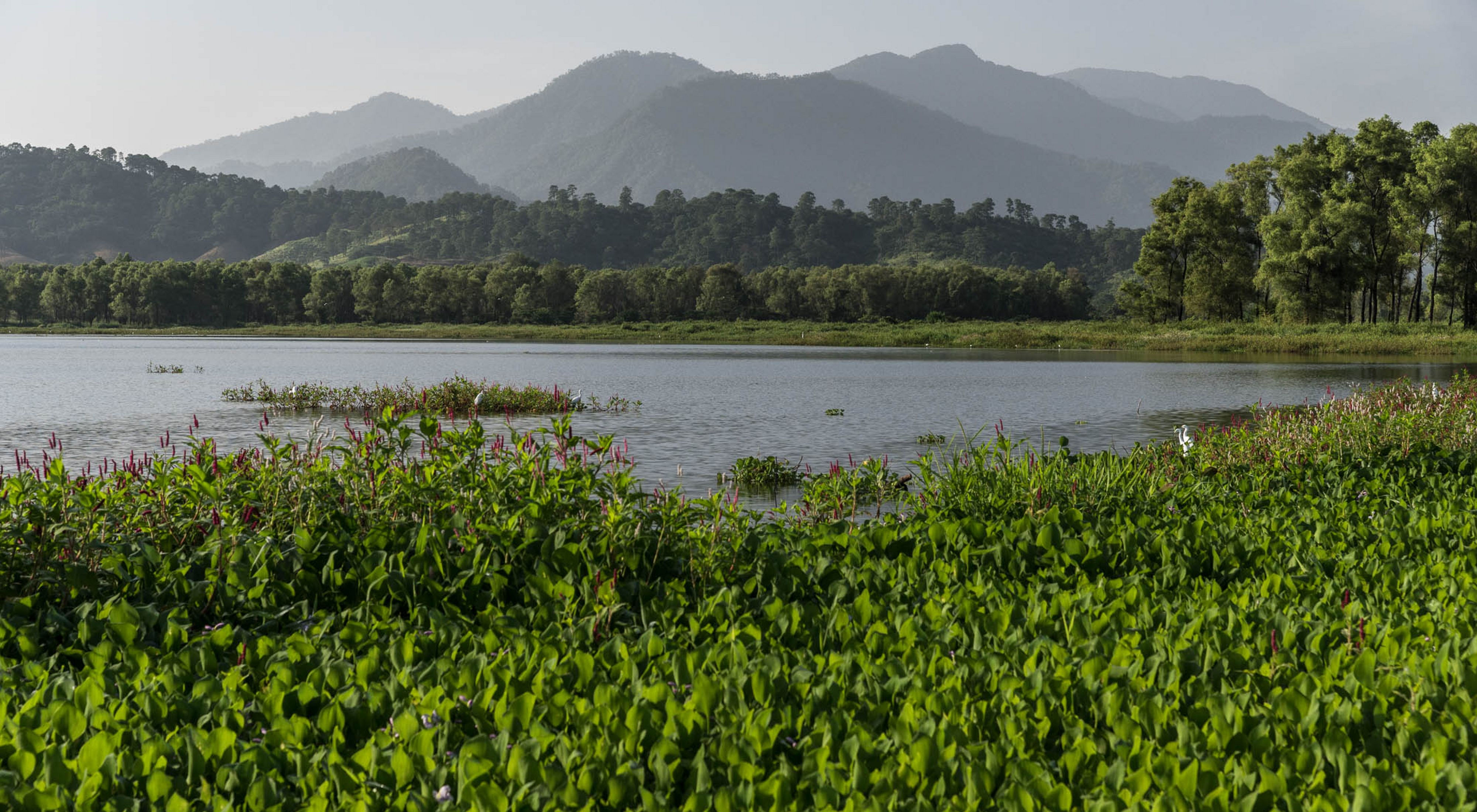 Chiapas agua