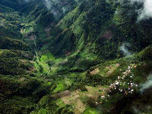 Bosque Chiapas
