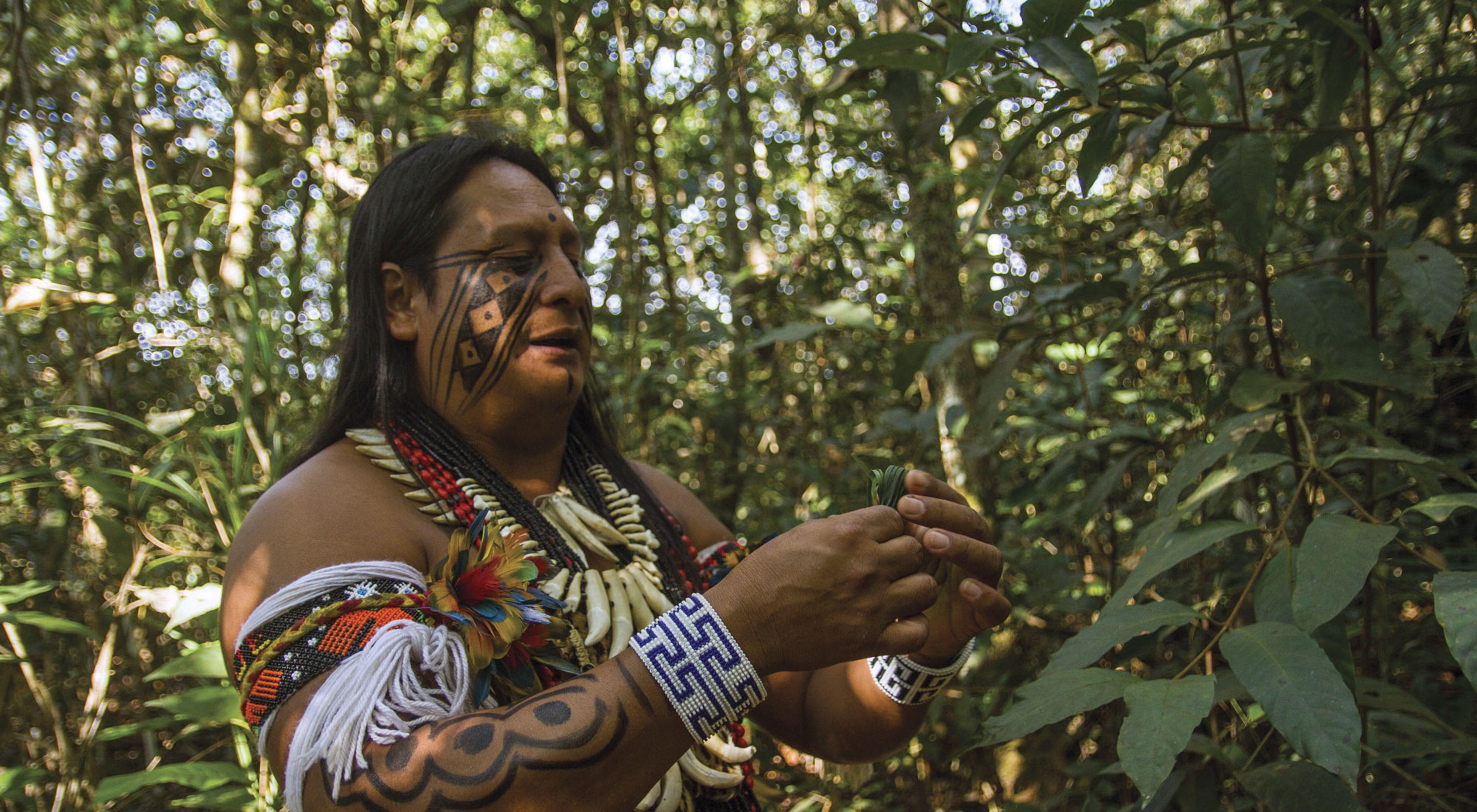 El Jefe de la aldea Wazare, Rony Paresi, es parte del grupo indígena paresi en el Mato Grosso do Sul, Brasil. TNC apoya al grupo paresi en el desarrollo de proyectos turístico
