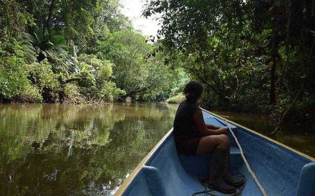 Una niña navega en una embarcación pequeña en un río entre áreas boscosas