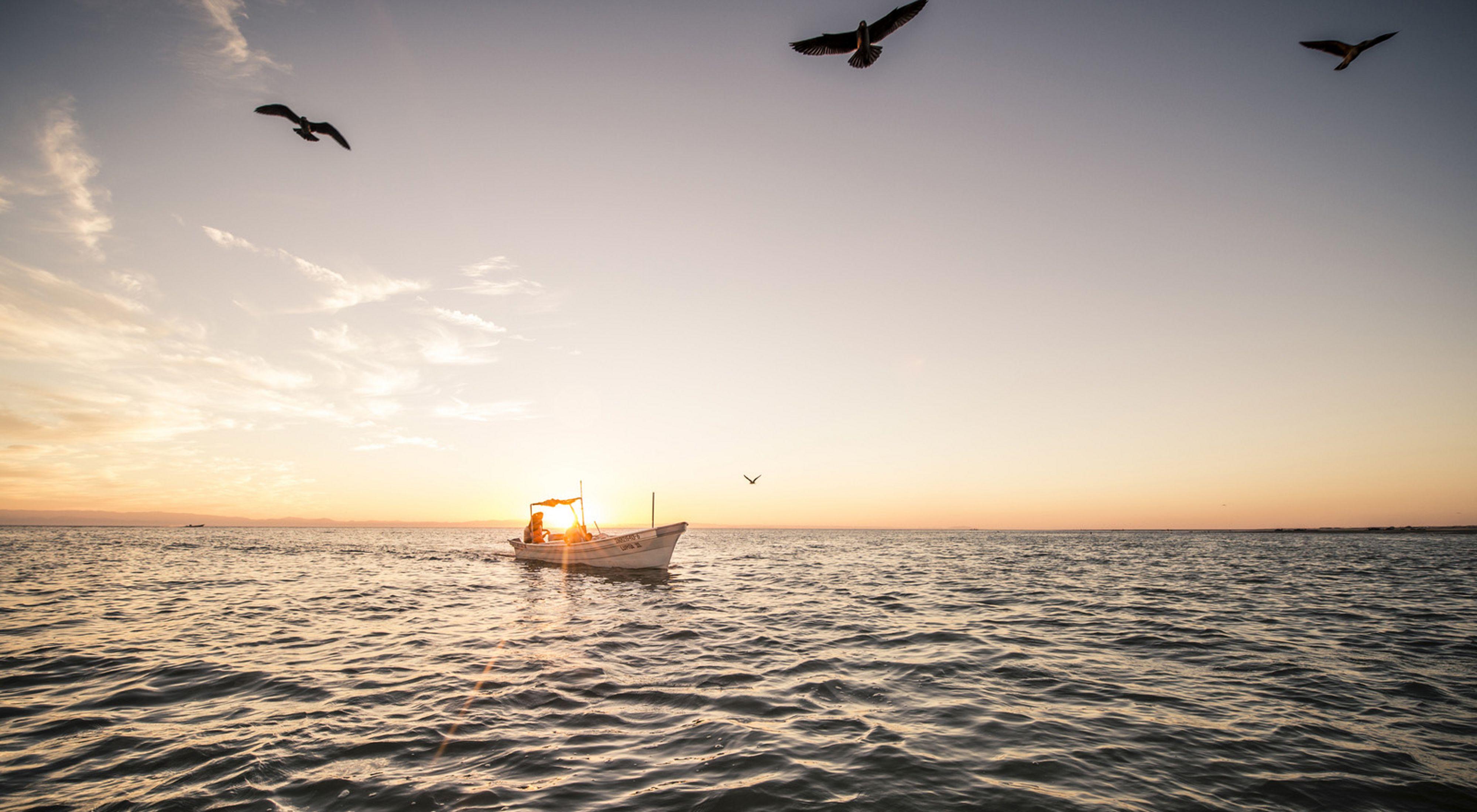 Pescadores de camarón en el Golfo de Santa Clara en Sonora, México.