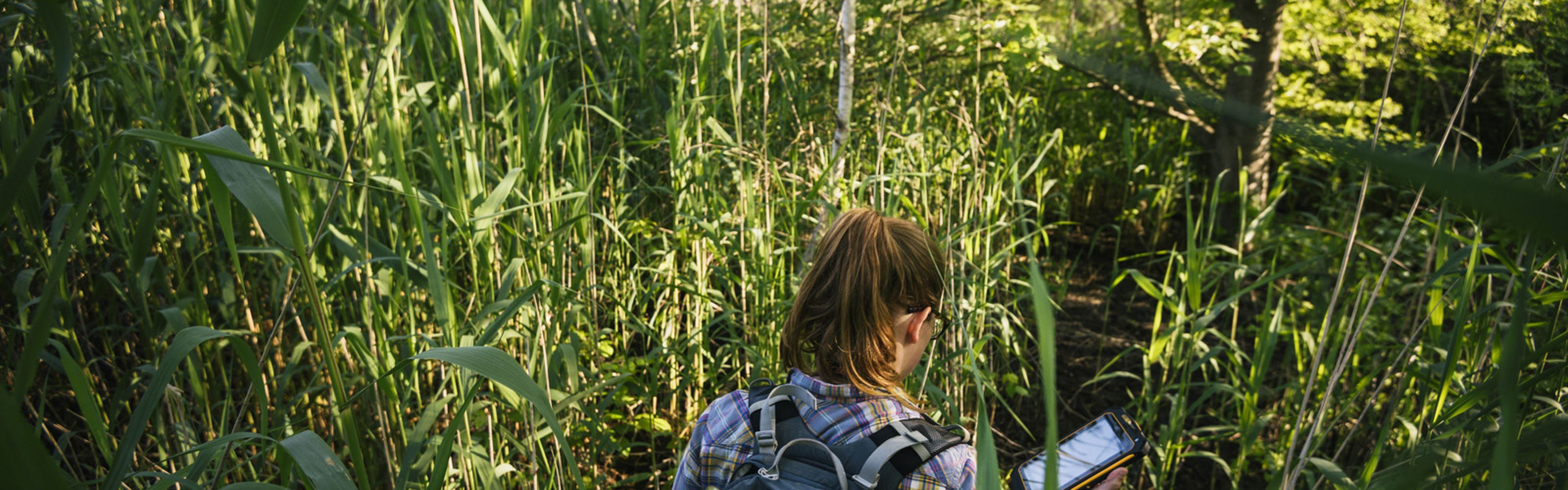 The Nature Conservancy scientist Lauren Alleman in Jamaica Bay Wildlife Reserve.