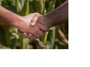 A handshake takes place in front of a cornfield.