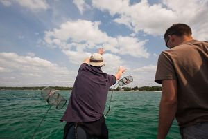 Scientists test new control methods for invasives