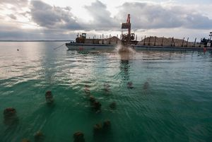 A reef restoration project in Grand Traverse Bay
