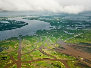 Mississippi River Delta and River below New Orleans, Louisiana