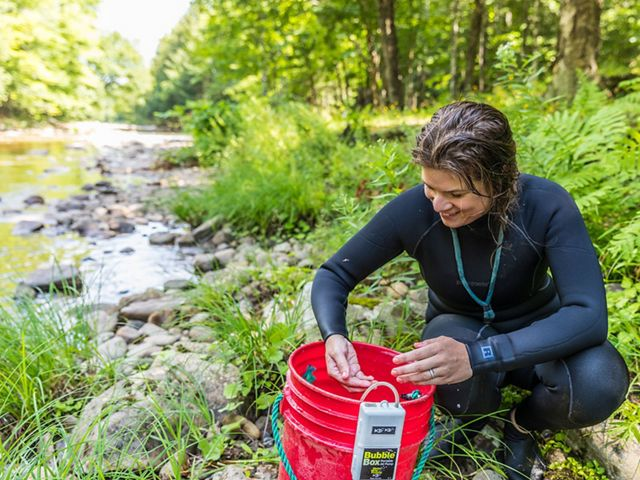 Molly Payne Wynne wears a wetsuit and holds a small fish over a red collection bucket.