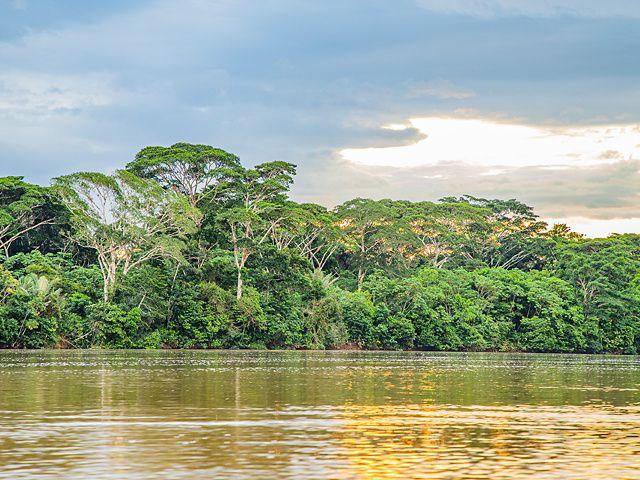 El ritmo acelerado en que se está transformando la selva amazónica colombiana hace que imágenes como esta estén en riesgo de desaparecer.